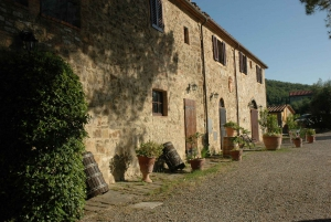 Wine Tasting and Dinner in the Vineyards of Chianti