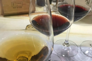 Wine Tasting of Tuscan Wine in Florence