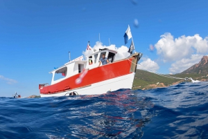 Cannes: 4-Hour Boat and Snorkeling Tour
