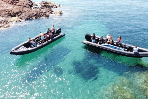 From Cannes: Discover Saint Tropez by Boat