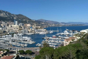 From Nice: Eze, Monaco & Monte Carlo Half-Day Tour