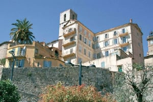 From Nice: Flavor & Taste of Provence