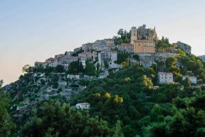 From Nice: Monaco, Monte Carlo & Eze Private Half-Day Tour