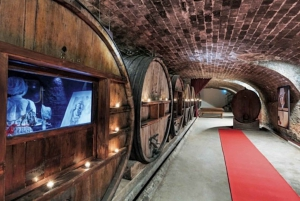 From Nice: Private Provence Wine Tasting Experience