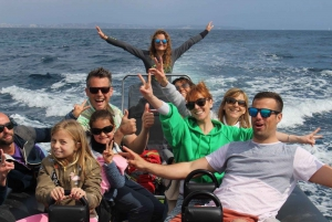 Nice: Coastline Boat Cruise to Monaco