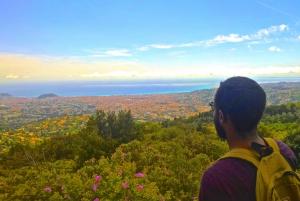 Nice: E-Bike 7 Hills Tour and Optional Wine Tasting