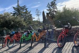 Nice: Panoramic French Riviera E-Bike Tour