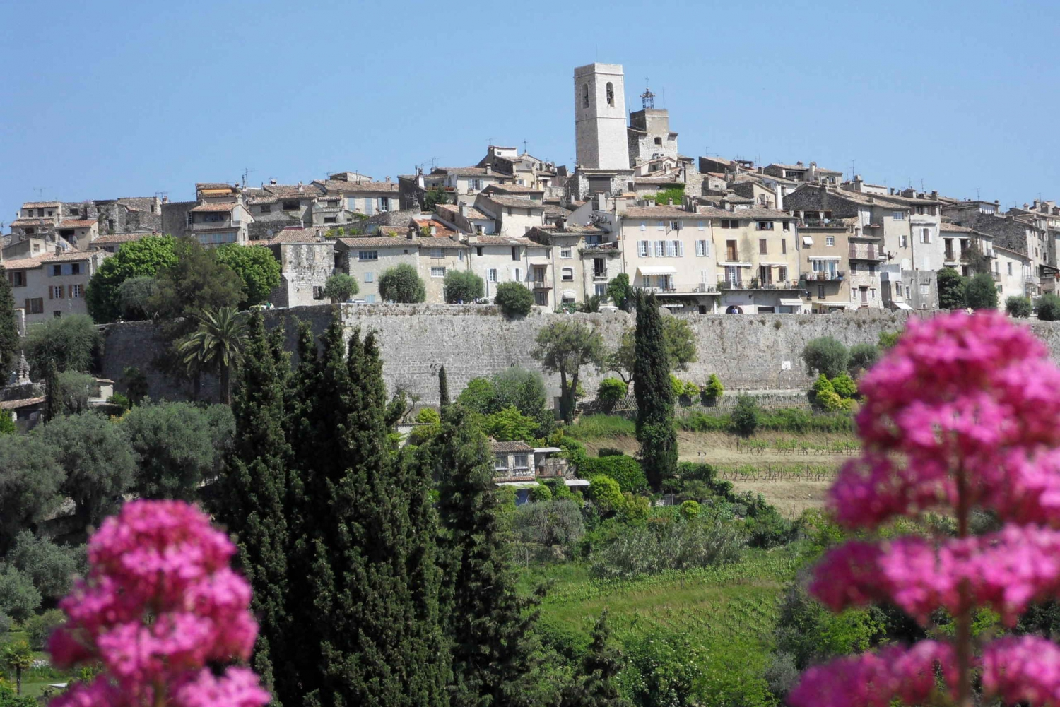 Taste of Provence Tour from Nice