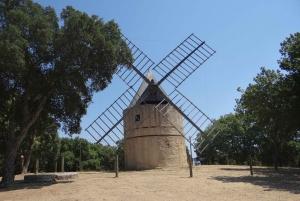 Toulon & St Tropez: Côtes-de-Provence 8-Hour Wine Tour