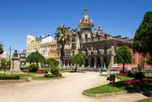 From Santiago de Compostela: Lugo and Cathedrals Beach