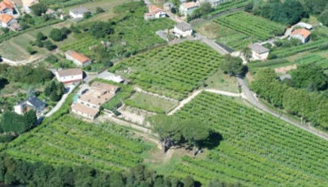 Quinta de Couselo