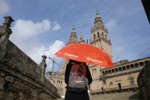 Santiago de Compostela: Private Guided Tour