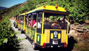 Tourist Train Aba Sacra