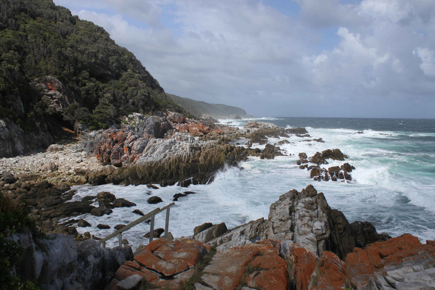 4-Day Garden Route Experience