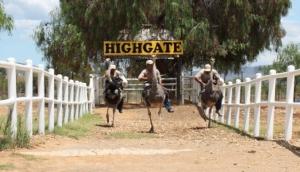 Highgate Ostrich Show Farm