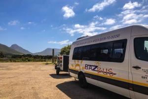 Hop-on Hop-off Bus between Cape Town & Port Elizabeth