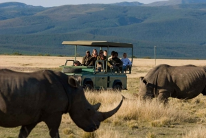 Plettenberg Bay Game Reserve: 2-Hour Game Drive