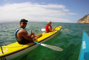 Plettenberg Bay: Guided Sea Kayak Tour