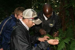 Tsitsikamma Guided Hikes