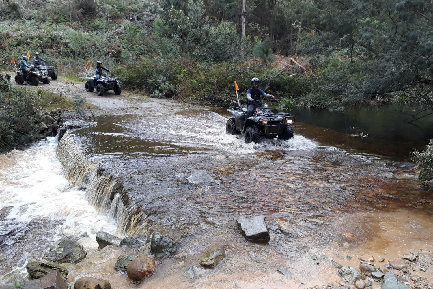 Tsitsikamma: Quad Bike Tour