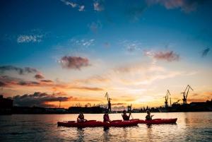 Evening Kayak Tour