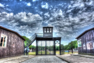 From Transportation to Stutthof Concentration Camp