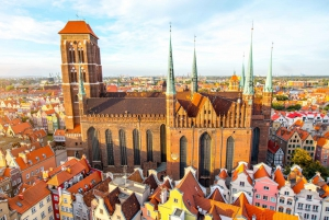 Full-Day Private Guided City Tour with Transport
