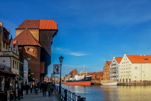 Gdansk: Private or Shared Sightseeing Tour by Electric Car