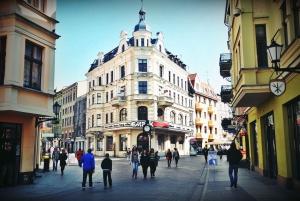 Torun - City of Copernicus: Day Tour from Gdansk or Poznan