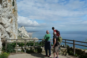 From Costa Del Sol: Bus to Gibraltar
