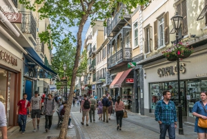 From Malaga: Day Trip to Gibraltar with Guided Tour
