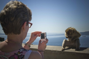 From Seville: Day Trip to Gibraltar