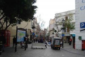 From Tarifa Area: Gibraltar Sightseeing Tour