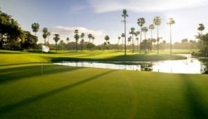 Above Par Golf Tours
