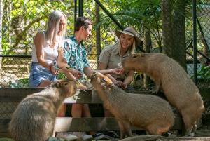 Currumbin Wildlife Sanctuary Ticket
