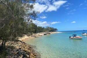 From Gold Coast: North Stradbroke Island Sunset Tour