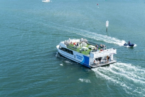 Gold Coast: 1.5 Hour Afternoon Sightseeing Cruise