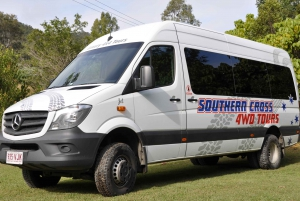 Gold Coast: Natural Bridge and Springbrook Afternoon Tour