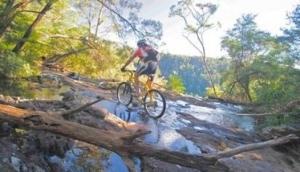 Mountain Bike Tours - Byron Bay