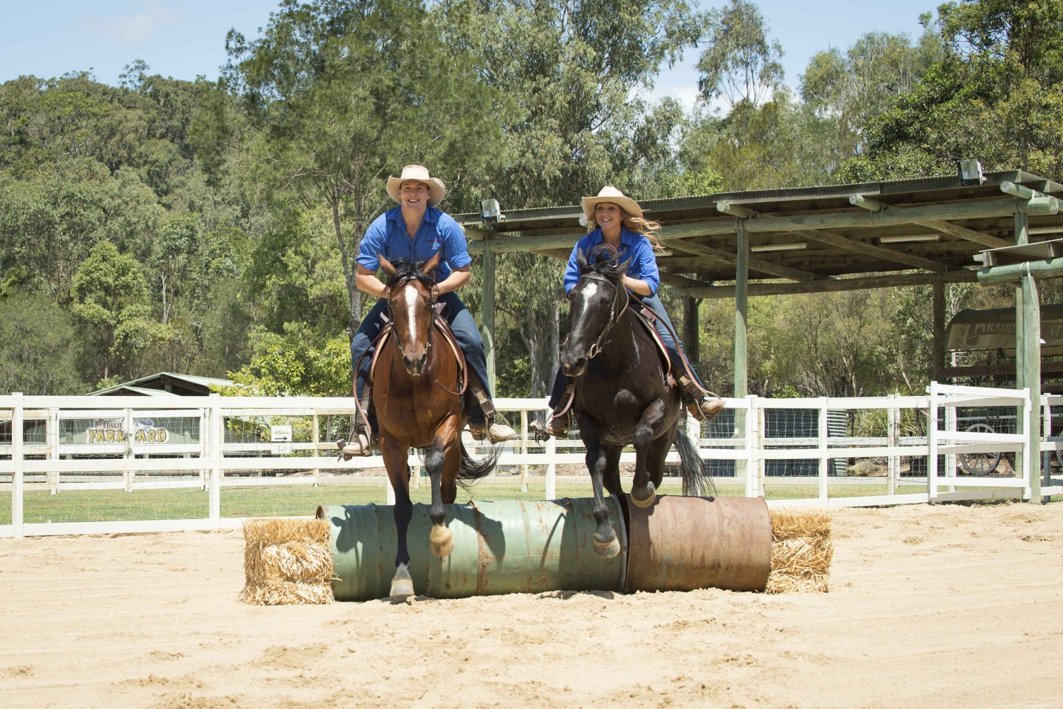 Paradise Country: Ultimate Aussie Farm Experience & Lunch