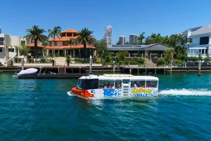 Surfers Paradise: Guided Gold Coast Amphibious Bus Tour