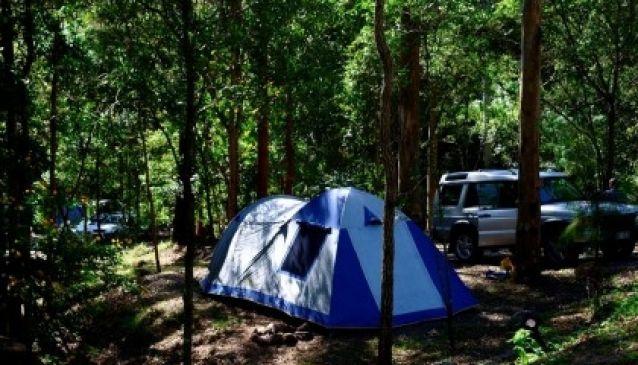 Tamborine Mountain Caravan and Camping