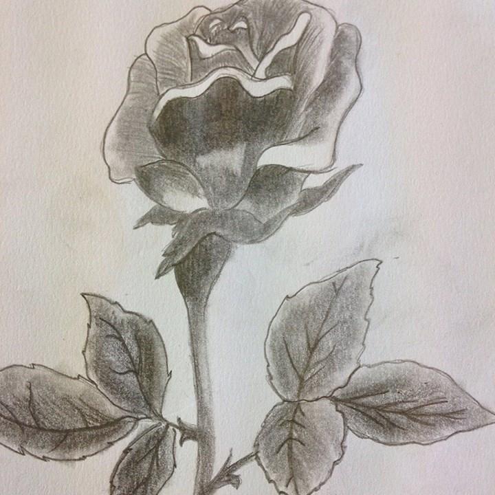 Advance Sketching Workshop