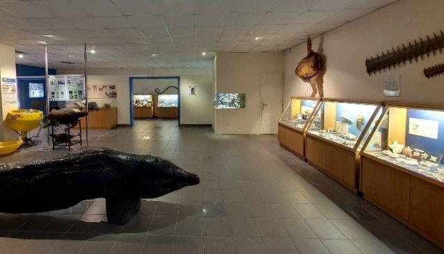 Aquarium of Rhodes