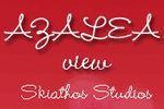 Azalea View Studios