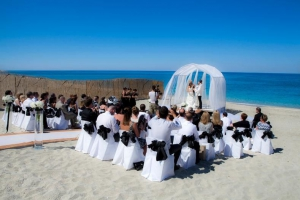 Mamma Mia Weddings