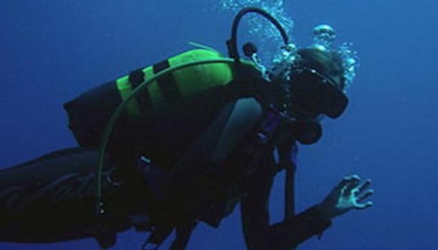 Pro Divers