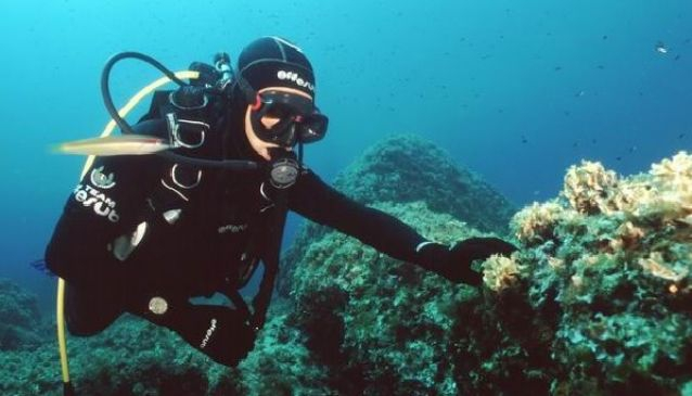 Skiathos Diving center