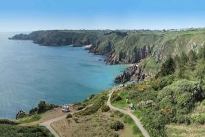 Half-Day Small-Group Coastal Highlights Tour