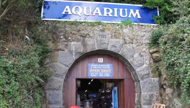 The Guernsey Aquarium